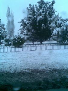 jardin helado,parque nevado